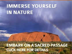 Immerse Yourself in Nature